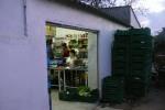 Wendlandkoop mitten in der Pampa